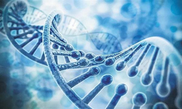 国内供卵试管前,为什么要让捐卵者做基因检测